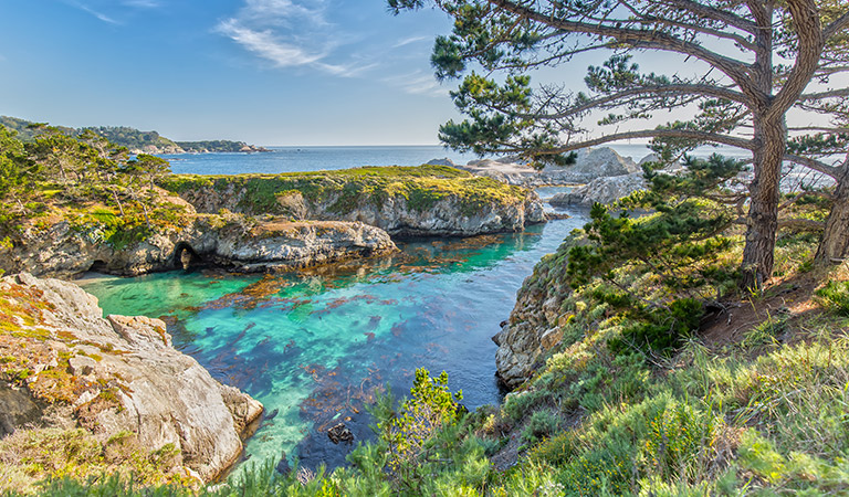 Point Lobos State Reserve - Monterey California